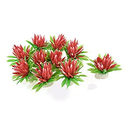 Amazon.com : eDealMax Flores hierba Planta Aquaric plástico pecera artificiales Submarino 10pcs : Pet Supplies