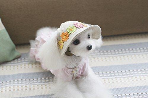 PETSOLA 애완 동물 모자 애견 모자 예쁜 모자 꽃 자외선 방지 야구 스포츠 즐거운 2 크기-S / PETSOLA Pet Hat Pet Cap Cute Hat Flower UV Protection Baseball Sport Comfort 2 Sizes - S