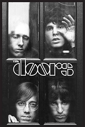"Rare The Doors/Faces in Window DVD TV & Videos Cover Poster R-Evolution L 24"" x 36"""