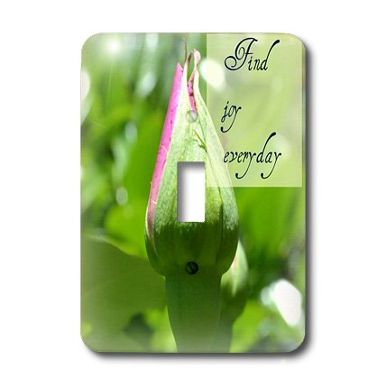 3dRose LLC lsp_31434_1 Find Joy Every Day Rose Inspiration Inspirational Quotes Single Toggle Switch