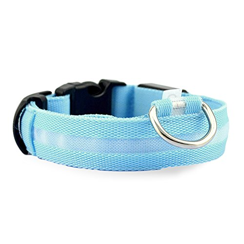 LESYPET LED Dog Collar Flashing Lights Dog Blue Collar with Green Light - Medium -