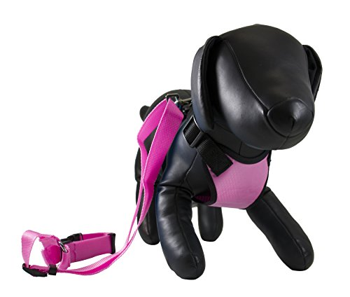 Petcessory PHB-001-PIN-S Travel Harness with Leash, Small, Pink by Petcessory
