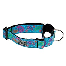RC Pet Products 1 1/2 Inch All Webbing Martingale Dog Collar, Large, Tropical Paisley