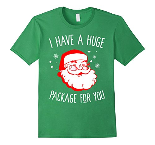 Santas Huge Package (Mens I Have A Huge Package For You Dirty Santa Christmas T-shirt Large Grass)