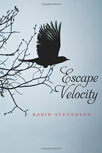 Download Escape Velocity PDF