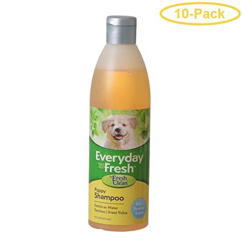 Fresh N Clean Everyday Fresh Puppy Shampoo - Baby Powder Scent 16 oz - Pack of 10 by Fresh N Clean
