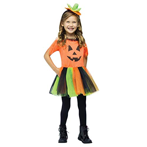Fun World Pretty Pumpkin Toddler Costume (X-Large-4/6)]()