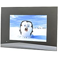 19 Mirror TV For Bathroom / Shower / Kitchen, AVEL AVS190FS