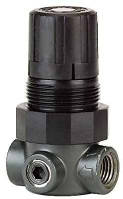 Proximity® Miniature Pressure Regulator, MPR1-1, 0 to 15 psi, Air by Dwyer Instruments, Inc.