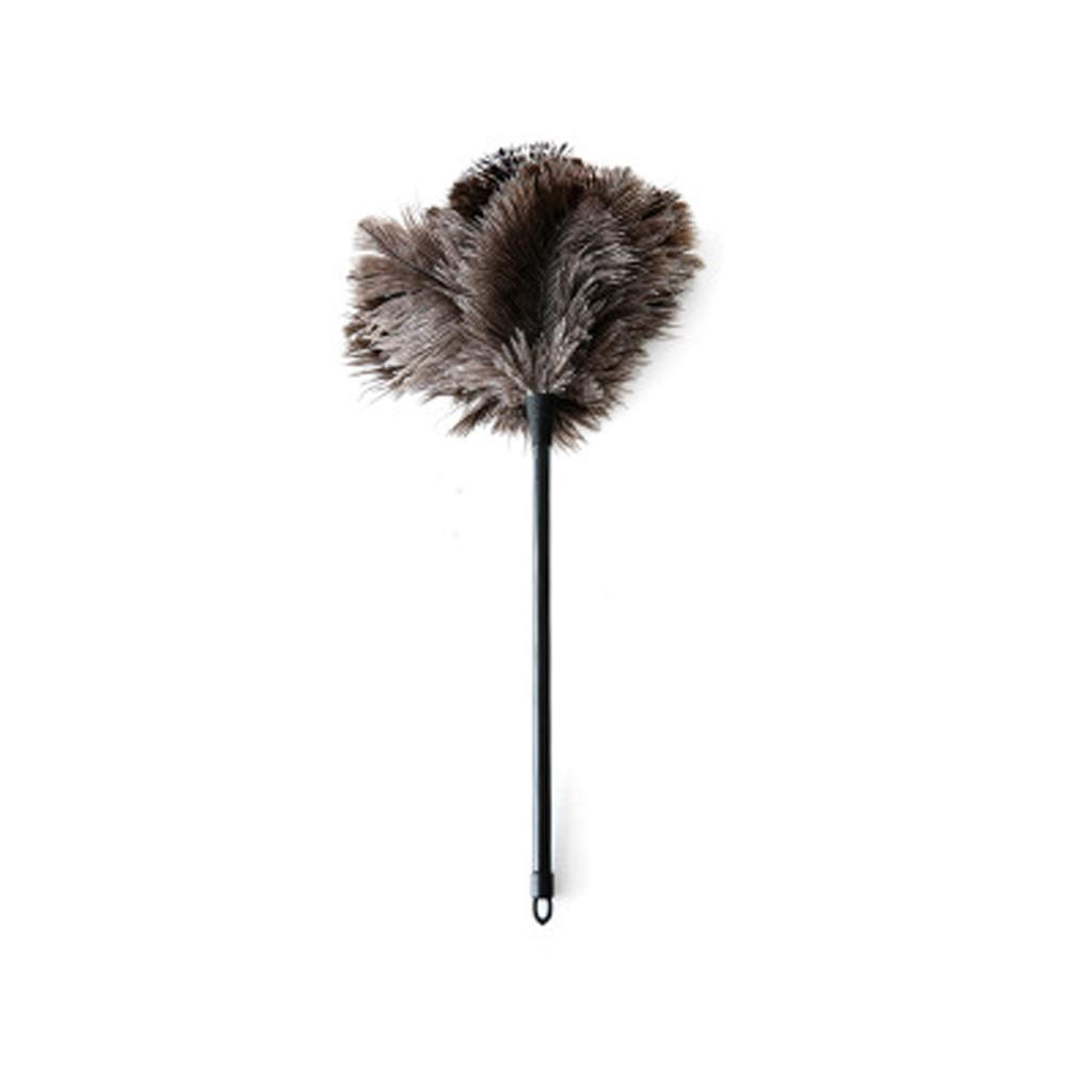 ZHANGY Wood Handle, Natural Feathers Ostrich Feather Duster Keyboard Computer Devices Telephone Kitchen Cleaning Brush,Plastic Handle