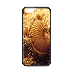 "Shell Personalized Case for Iphone6 Plus 5.5"", Customized Shell Case"