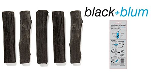 Black + Blum Set of 5 Replacement Charcoal Filters for Eau Water Bottles or Carafe Black