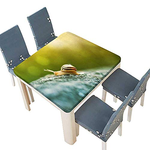 PINAFORE Printed Fabric Tablecloth A Snail Climbing Rock Indoor Outdoor Use 49 x 49 INCH (Elastic Edge)