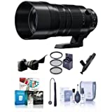 Adorama Panasonic Lumix G Leica DG Vario-Elmar 100-400mm F/4-6.3 Power O.I.S. Lens - Bundle with Filter Kit, Cleaning Kit, Lens Pen Cleaner, Lens Cap Leash, Flex Lens Shade, Software Pack