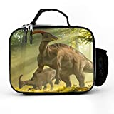 SARA NELL Lunch Backpack Troodon Dinosaur In Forest Lunch Box with Padded Liner,Stylish insulated Lunch Bag,Durable Thermal Lunch Cooler Pack for Boys Men Women Girls Adults Teens