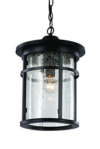 Trans Globe Lighting 40386 BK Outdoor Avalon 16'' Hanging Lantern, Black by Trans Globe Lighting