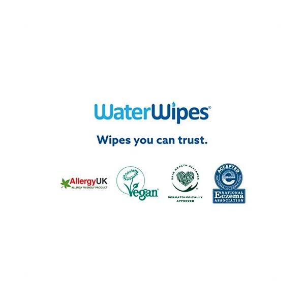 WaterWipes Salviettine Umidificate per la pelle sensibile dei bambini, 99,9% di acqua purificata, 12 Confezioni da 60 6