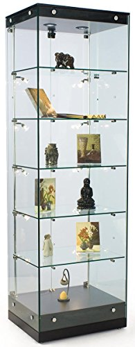 Display Case With Led Lighting in US - 6