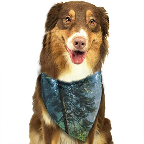 (Pet Scarf Dog Bandana Bibs Triangle Head Scarfs Silent Fog Forest Accessories for Cats Baby)