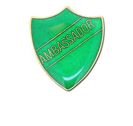 Amazon com: 1000 Flags Ambassador Pin Badge for High School