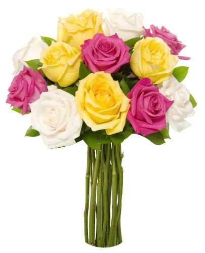 [Benchmark Bouquets Dozen Vibrant Roses, No Vase] (Fresh Floral Arrangements)