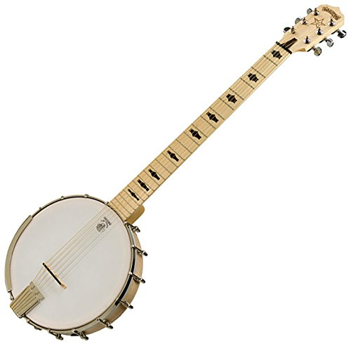 Deering Goodtime 6- String Banjo (6 String Banjo Deering)