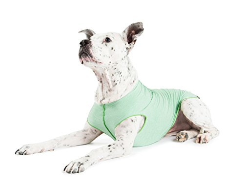 Gold Paw Sun Shield Dog Tee - Pistachio Heather - Size 24 by Gold Paw