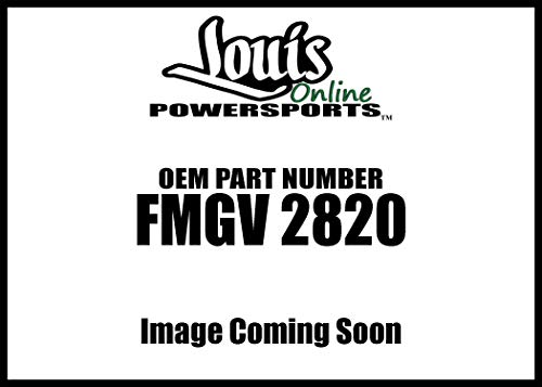 Race Tech Gold Valve Fork Kit Fmgv 2820 New
