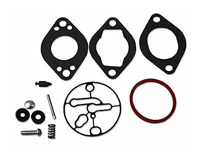 Oriental 696146 Power - Kit de reparación para carburador ...