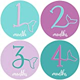 Mumsy Goose Month Stickers Baby Girl Milestone Stickers...