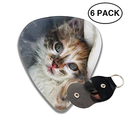 - Celluloid Guitar Picks 3D Printed Spoiled Kitty Best Guitar Bass Gift For Student