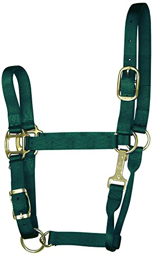 Hamilton Adjustable Chin Halter - Hamilton 1-Inch Nylon Adjustable Quality Halter with Chin Snap for 500 to 800-Pound Horse, Small, Dark Green