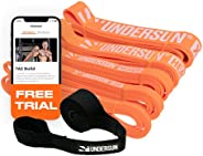 Undersun Fitness Resistance Loop Exercise Bands. Set of 5 Pullup Assistance Workout Bands with Free Week Worko