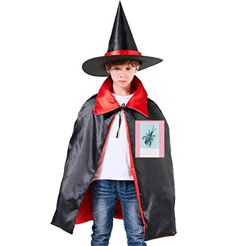 One of my Insect in Photo Halloween Shawl and Witch Hat for Children Kids -