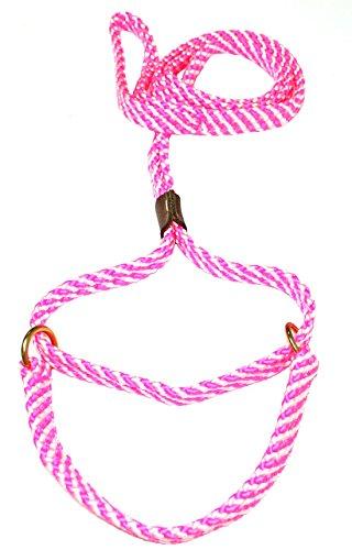 - Lone Wolf 5/8 x 6' Flat Braid Martingale Leash Pink/White Spiral