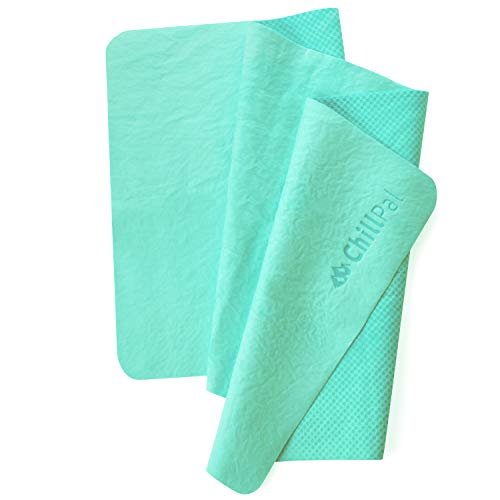 Cooling Towel For Instant Relief Sports Towel Cooling Towels Sports Cooling Towel Chill Towel Cool Towel For Neck Cold Towel For Athletes Kids Baby Dogs Men Women Yoga Workout Camping Fitness Gym