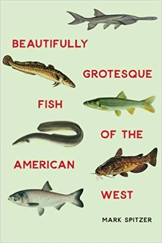 Image result for beautifully grotesque fish of the american west
