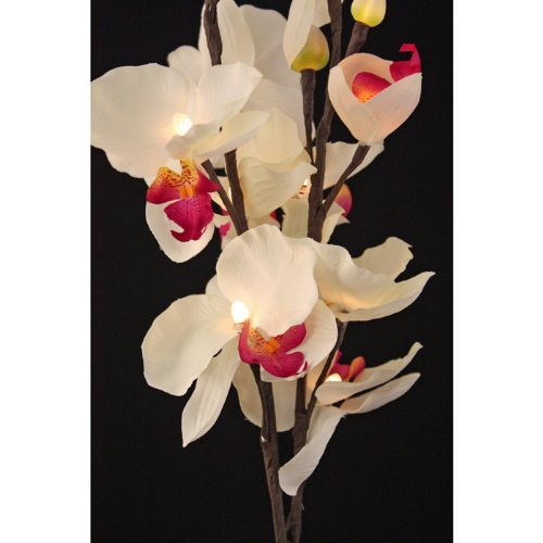 The Light Garden PKORQ16 Lighted Pink Orchids with 16 Bulbs, 31-Inch Tall