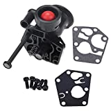 Riuty Metal Carburetor Carb,with Installing Hardware for Brix Briggs & Stratton 499809 498809A 494406