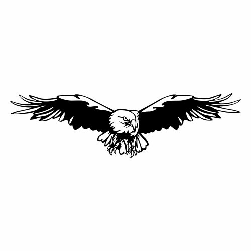 Kiwistar Adler Wandtattoo in 6 Größen - Wandaufkleber Wandaufkleber Wandaufkleber Wall Sticker B00RVWHZBC Wandtattoos & Wandbilder 5f6795