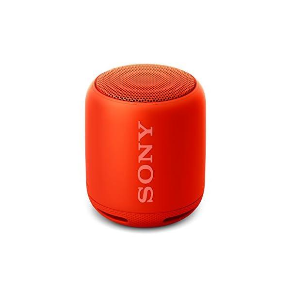 Sony SRS-XB10R