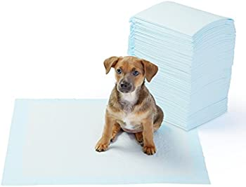 100 Count AmazonBasics Dog and Puppy Training Pads, Heavy Duty & Regular