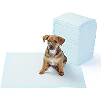 Best Large Dog Pee Pads
