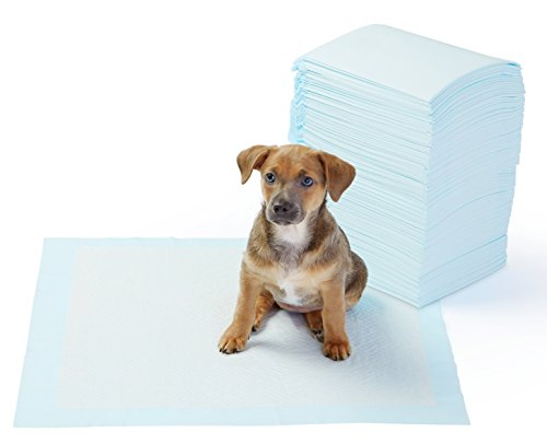 AmazonBasics Pet Training and Puppy Pads, Regular - 100 Count (Pad Training Plastic)