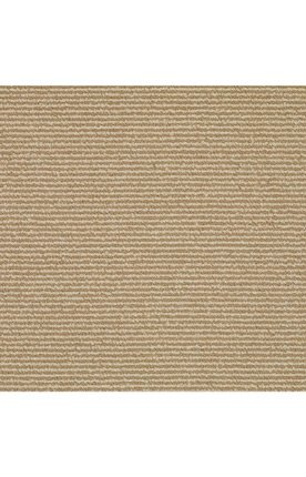 Capel Rugs Sisal Rug (Capel Rugs 2001RS08001000000 Shoal Sisal Rectangle Machine Woven Area Rug, 8 x 10