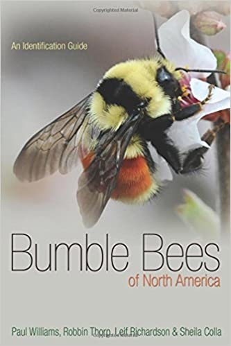 Bumble bees of north america an identification guide princeton bumble bees of north america an identification guide princeton field guides paul h williams robbin w thorp leif l richardson sheila r colla freerunsca Gallery