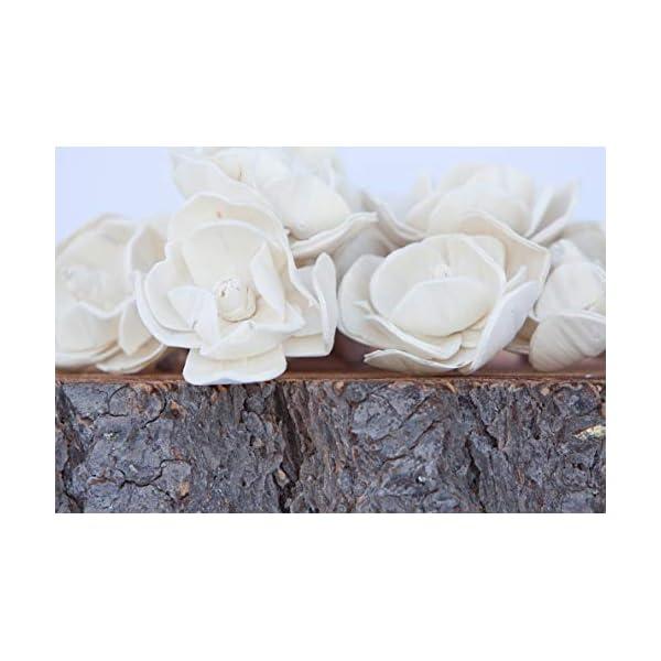 Bloem, Inc. Magnolia Sola Flowers, 2″ Size, Set of 10