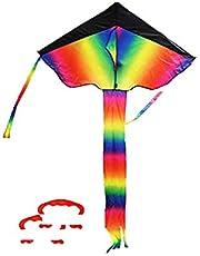 INTVN Enorme Regenboog Delta Vlieger voor kinderen en volwassenen, geweldig outdoor speelgoed voor beginners, zeer gemakkelijk te vliegen vlieger zonnevliegers met twee draadplaten 50m