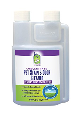 pet-urine-stain-odor-enzymatic-concentrate-by-doggone-pet-products-permanently-eliminate-dogs-cats-v