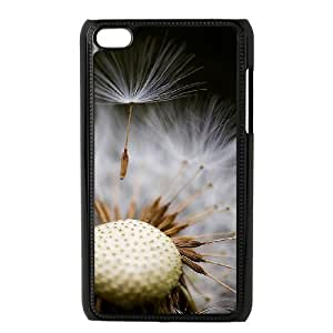 Ipod Touch 4 2D DIY Hard Back Durable Phone Case with dandelion Image